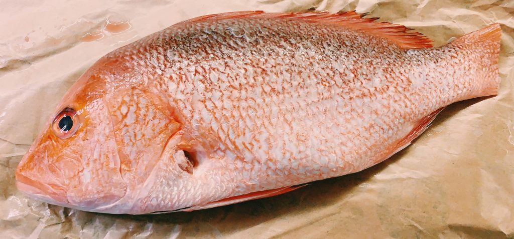 Red Snappers From Market